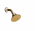 Shower Head with Arm & Escutcheon