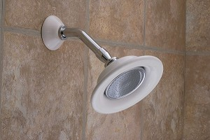 Wide Shower Head with Arm and Escutcheon