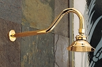 Brass Shower Head w/Extended Arm